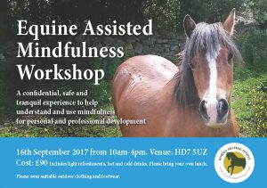 Equine Assisted Therapy Workshop