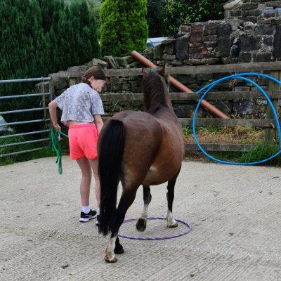 Mini in a hoop